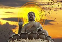 Giải mã những giấc mơ thấy Phật