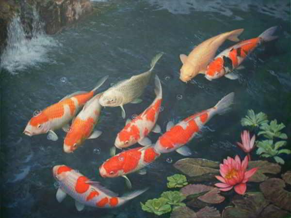 Giải mã giấc mơ thấy cá