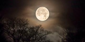 Giải mã chi tiết ý nghĩa giấc mơ thấy trăng